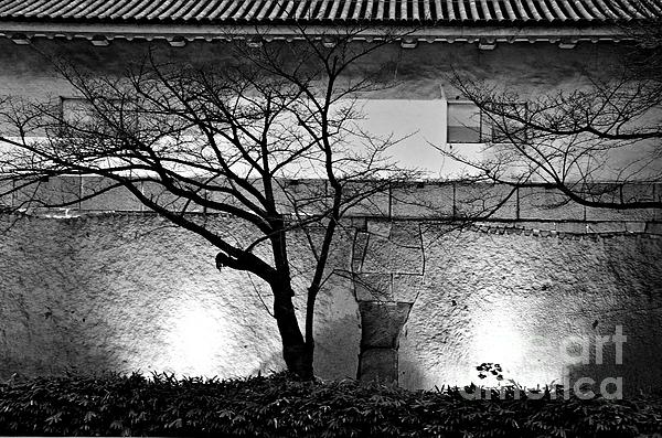 Osaka Castle Wall Print by Dean Harte