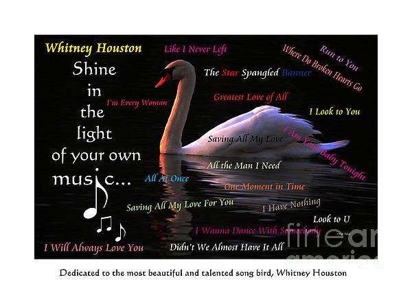 Olahs Photography - Our Song Bird - Whitney Houston