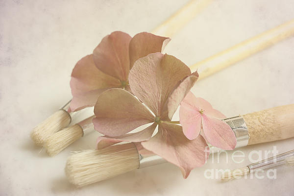 HJBH Photography - Paint Brushes With Flowers