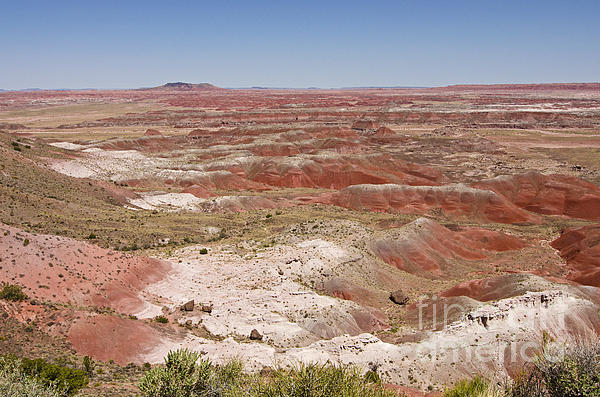 Bob and Nancy Kendrick - Painted Desert View