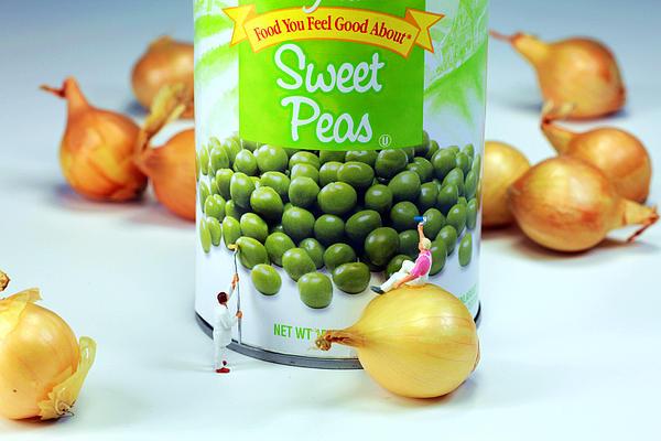 Painting Sweet Peas Poster Print by Paul Ge