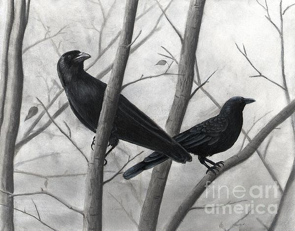 Pair Of Crows Print by Christian Conner