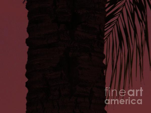 Marie Bulger - Palm Tree in Purple