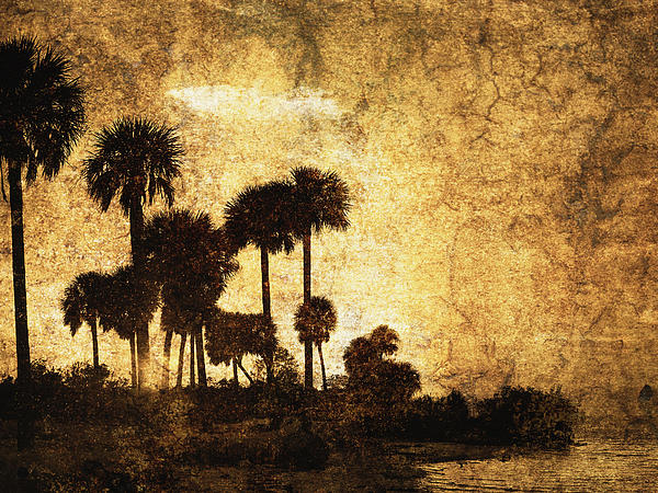 Skip Nall - Palm Trees On The River 8