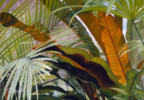Palms At Fairchild Gardens Print by Stephen Mack