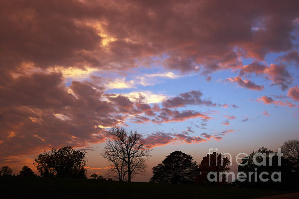Park At Sunset Print by Susan Isakson