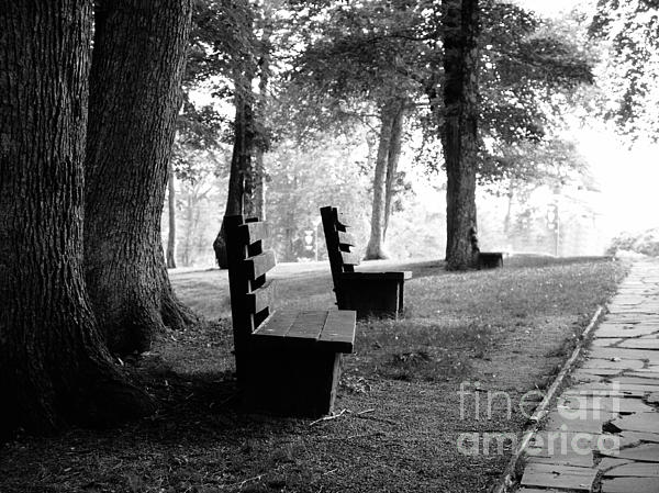 Lj Lambert - Park Bench in Black and White