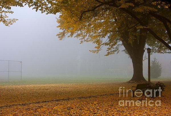 Park In Autumn Print by David Buffington