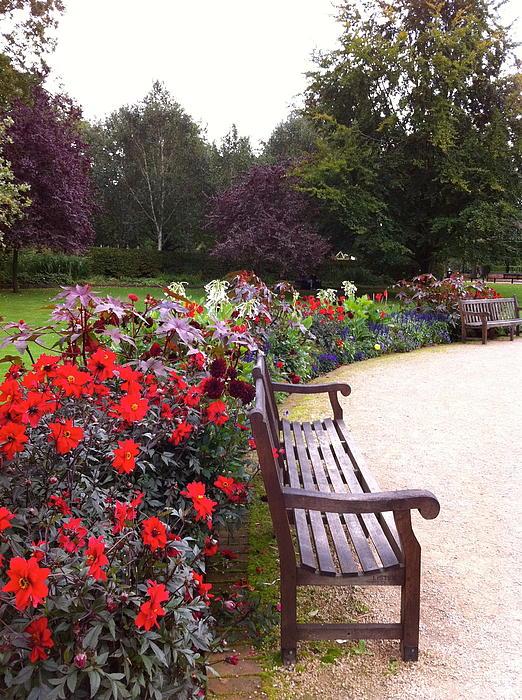 Sue Moreton - Park