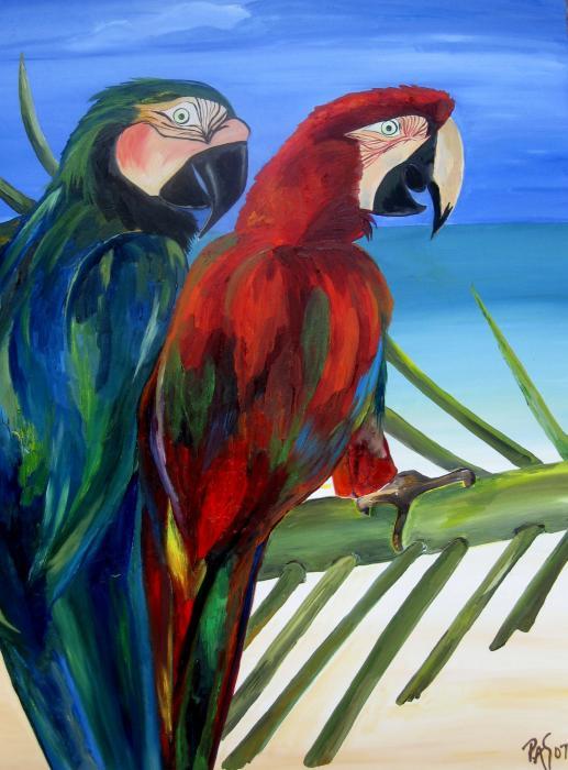 Parrots On The Beach Print by Patti Schermerhorn
