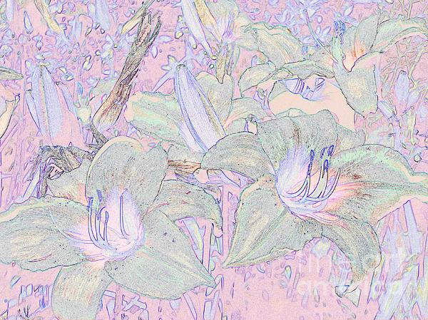 Afroditi Katsikis - Pastel Lillies