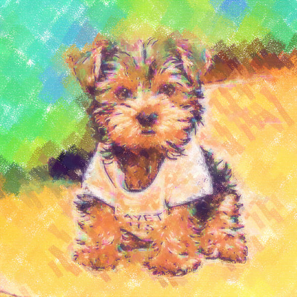 Pastel Paint Puppy Portrait Painting  - Pastel Paint Puppy Portrait Fine Art Print