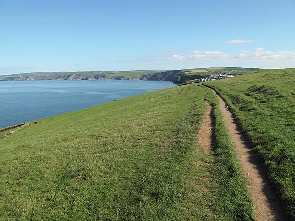 Path Along Coastline Port Isaac Cornwall Print by Thepurpledoor