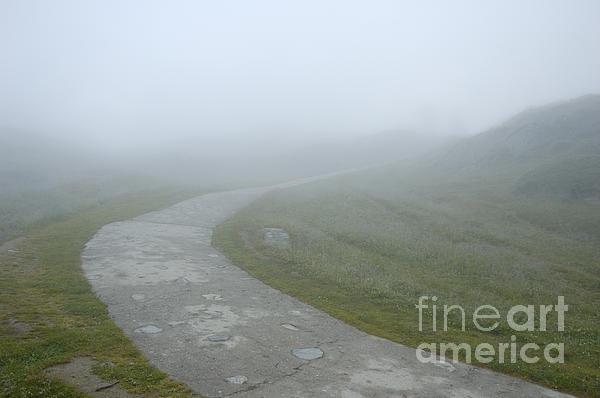 Path In The Fog Print by Matthias Hauser