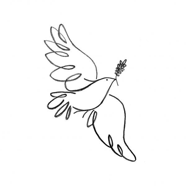 Peace Dove Drawing Peace Dove Fine Art Print Jenni Robison