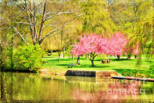 Peaceful Spring II Print by Darren Fisher
