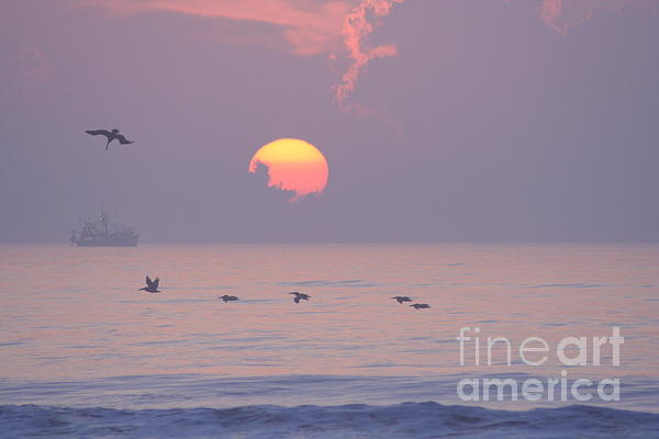 Peaceful Sunrise Print by Clint Day