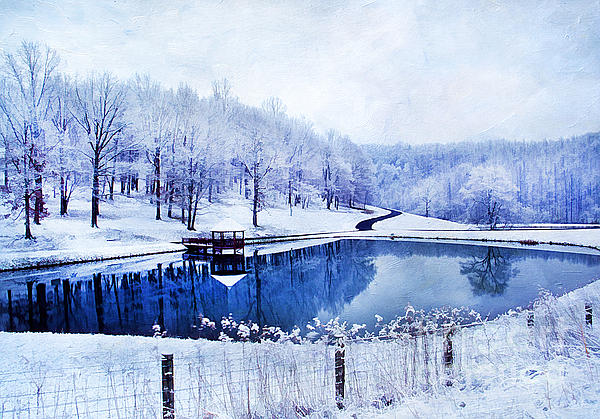 Peaceful Winters Day Print by Darren Fisher