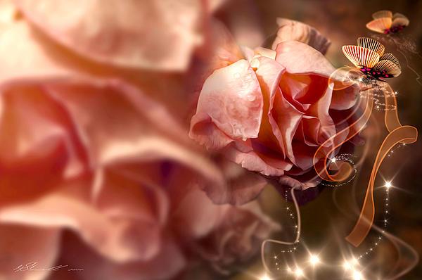 Peach Roses And Ribbons Print by Svetlana Sewell