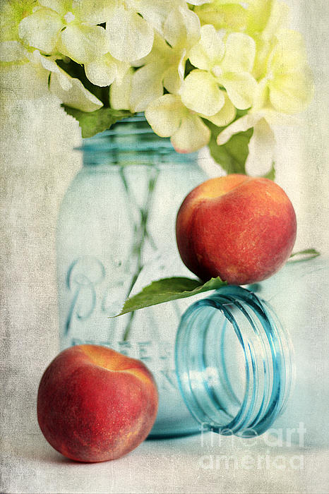 Peachy Print by Darren Fisher