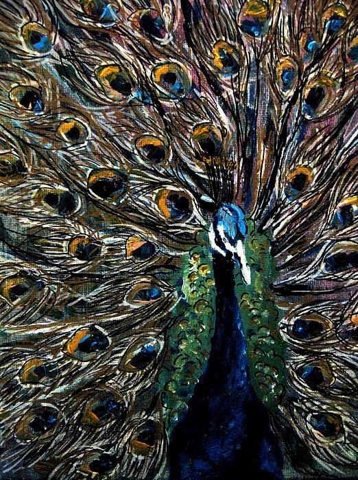 Peacock 2 Print by Amanda Dinan