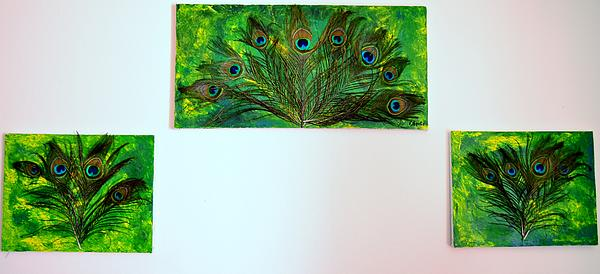 Peacock Feather Trio Print by Evelyn SPATZ
