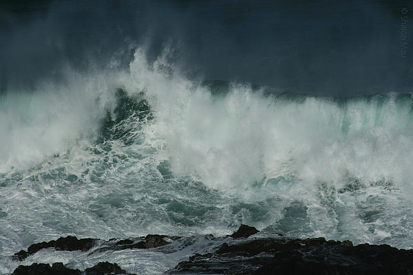 Peahi At Opana Point Pacific Ocean Maui North Shore Hawaii Print by Sharon Mau