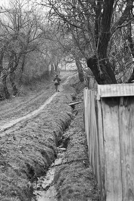 Peasant Man On A Muddy Road Print by Gabriela Insuratelu