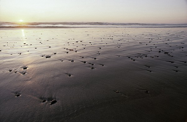 Pebbles Form Patterns On A Sandy Ocean Print by Jason Edwards