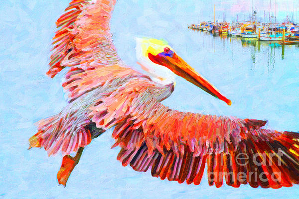 Pelican Flying Back To The Docks Print by Wingsdomain Art and Photography
