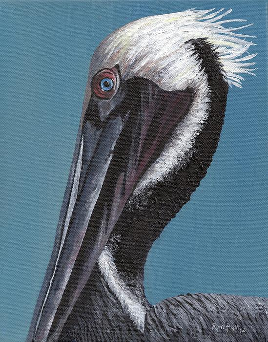 Rosie Phillips - Pelican