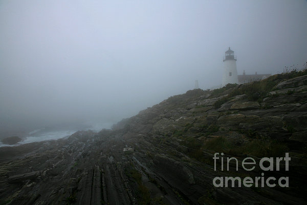 Pemaquid And The Sea Print by Timothy Johnson