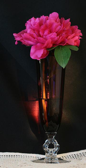 John Murdoch - Peony in Fine Glass