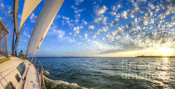 Perfect Evening Sailing On The Charleston Harbor Print by Dustin K Ryan