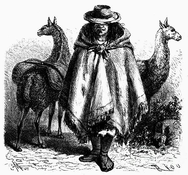 Peru: Llama Driver, 1869 Print by Granger