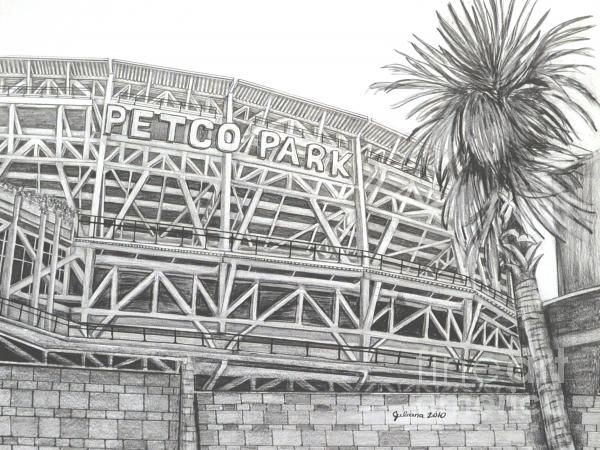 Petco Park Drawing  - Petco Park Fine Art Print