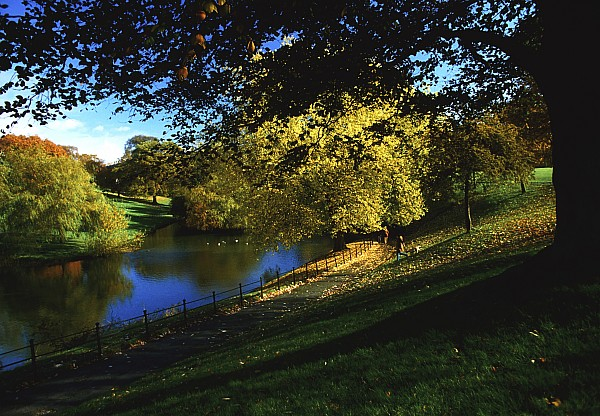 Phoenix Park, Dublin, Co Dublin, Ireland Print by The Irish Image Collection
