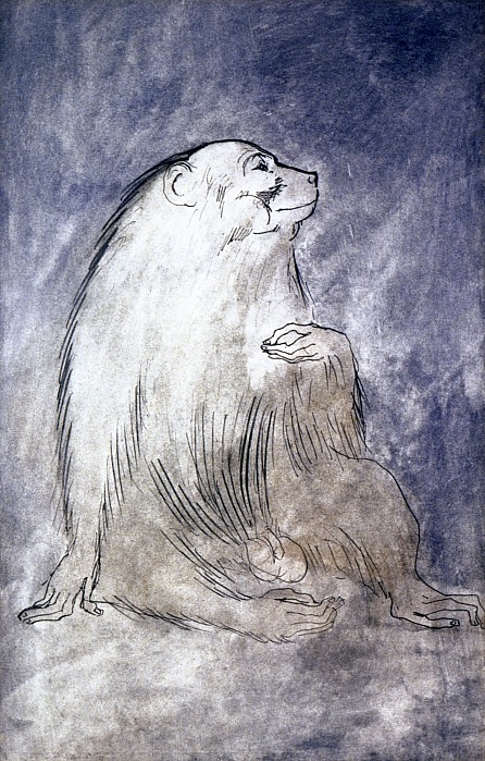 Picasso: Monkey, 1905 Print by Granger