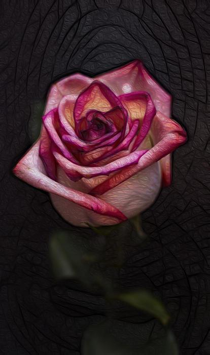 Picturesque Satin Rose Print by Linda Tiepelman