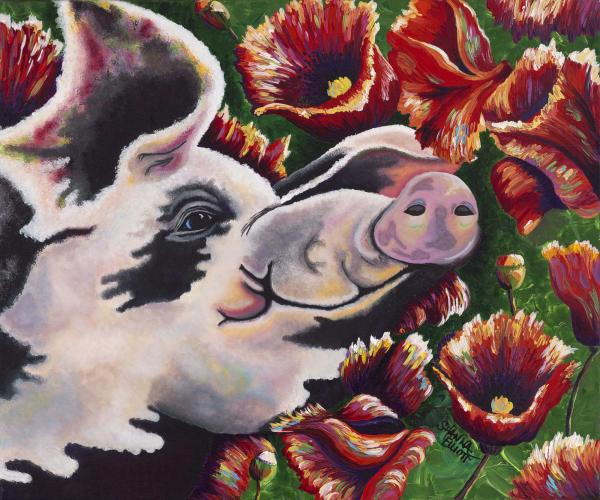 Pig n Poppies Painting