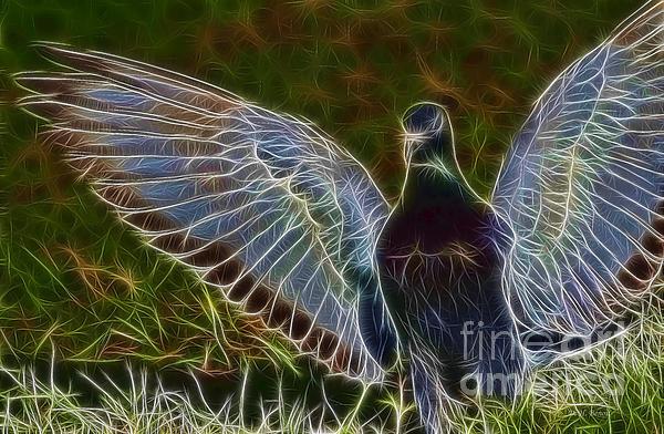 Pigeon Spirit Print by Deborah Benoit