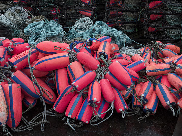 Pile Of Pink And Blue Buoys Print by Carol Leigh
