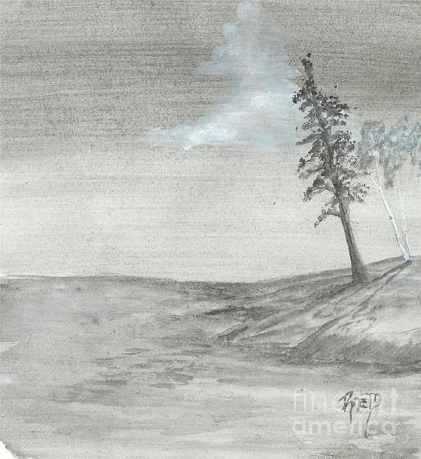 Pine And Birch Print by Robert Meszaros