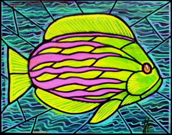 Tropical fish aurora colorado for Jims exotic fish