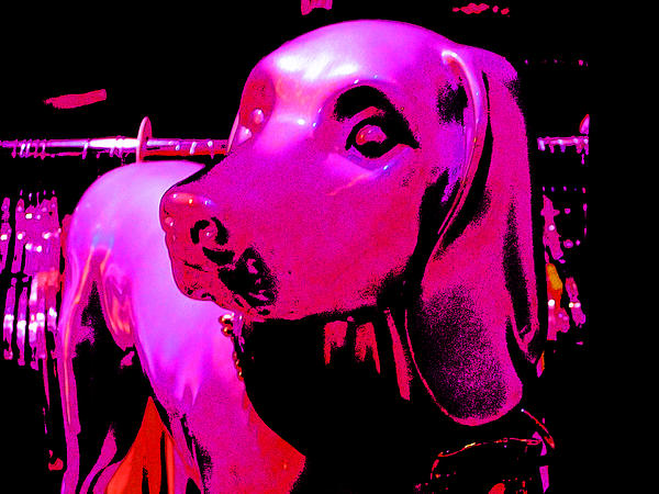 Pink And Purple Pooch Print by Kym Backland