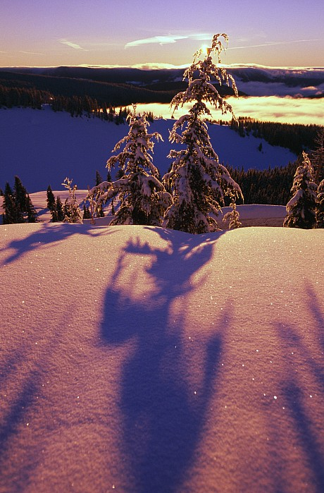 Pink And Purple Sunrise Shadows Of Snow Print by Natural Selection Craig Tuttle