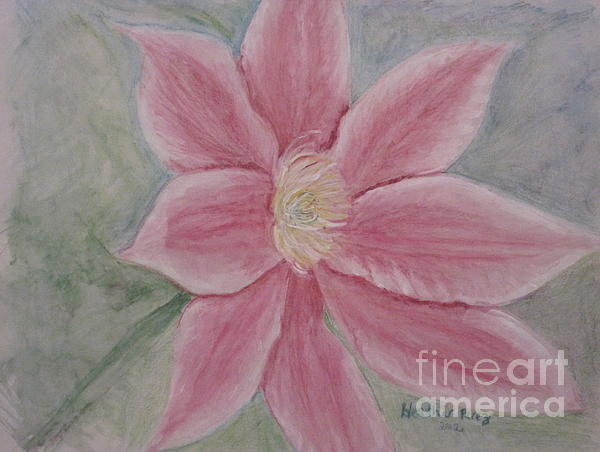 Pink Clematis Print by Heather Perez