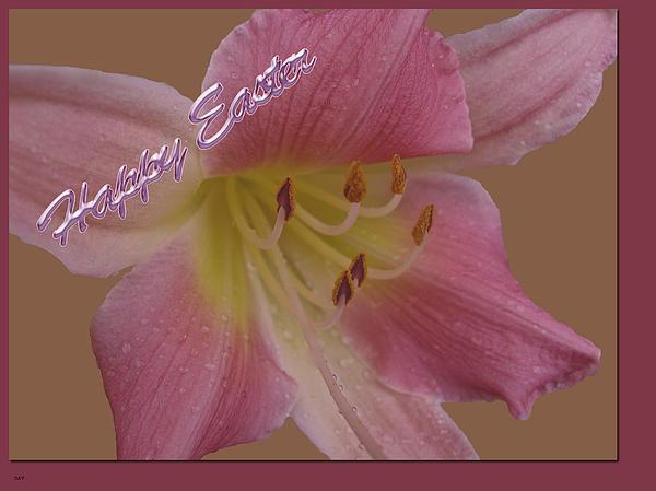 Debra     Vatalaro - Pink Lily Easter Card