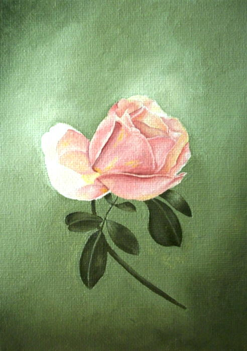 Pink Peach 1 Rose Painting Flower Painting Art Print Print by Sally Holt
