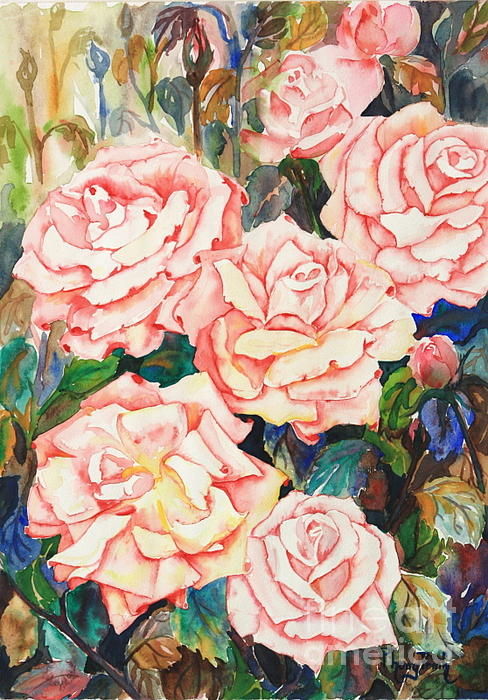 Phong Trinh - Pink Roses In Summer Heat 2